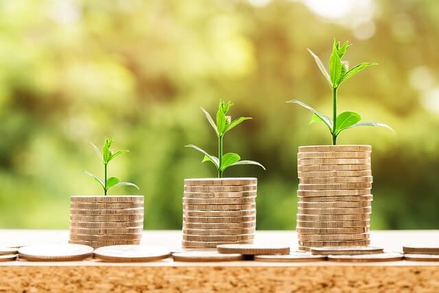 moedas em plantação simulando investimentos