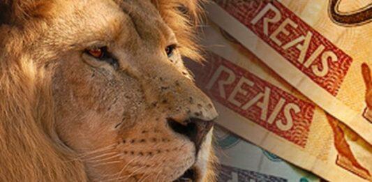 Montagem de um leão ao lado de notas de reais
