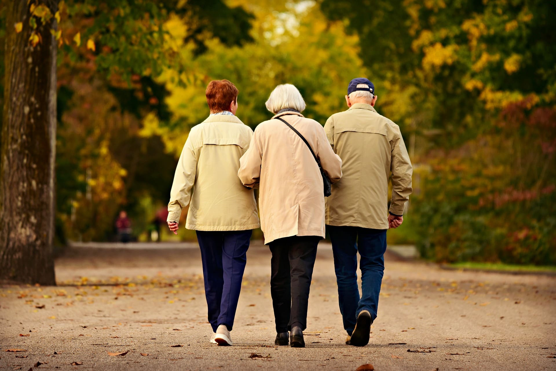 idosos sustentam a casa