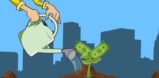 imagem de uma pessoa regando uma muda de dinheiros