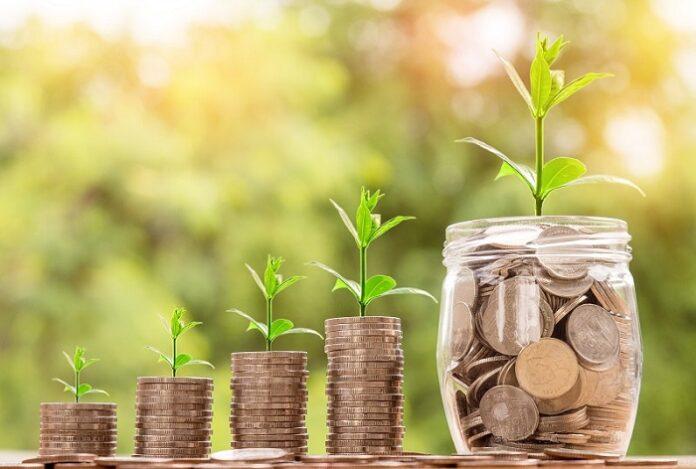 quatro fileiras de moedas e um pote transparente com várias moedas dentro com planta em cima