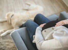 uma mulher grávida com a mão na barriga e um cachorro nos pés