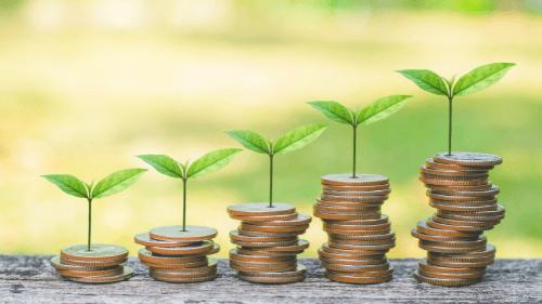 pilhas de moedas com mudas de plantas crescendo