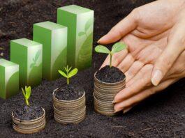 moedas com plantas