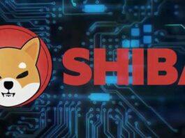 painel gráfico com o a logo da shiba